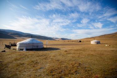 【モンゴル】これぞ大自然!牛・羊・犬・ヤギ・馬と戯れ過ごすローカルホームステイ4日間